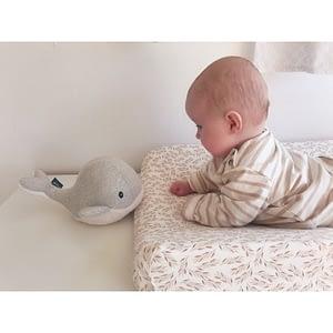 baleine bruit blanc bébé