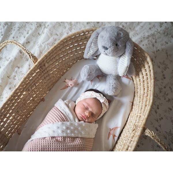 lapin bruit blanc bébé